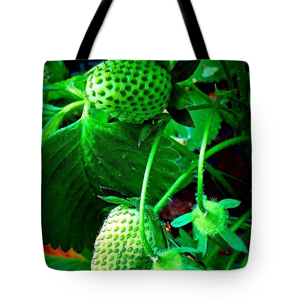 Leaves Tote Bag featuring the photograph Strawberry Path 2 by Georgina Mizzi