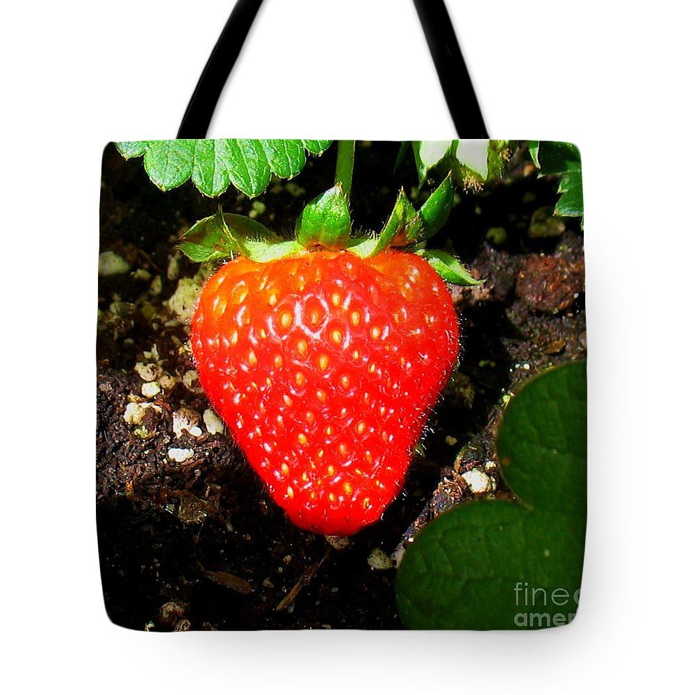 Strawberry Tote Bag featuring the photograph Strawberry by Patti Whitten