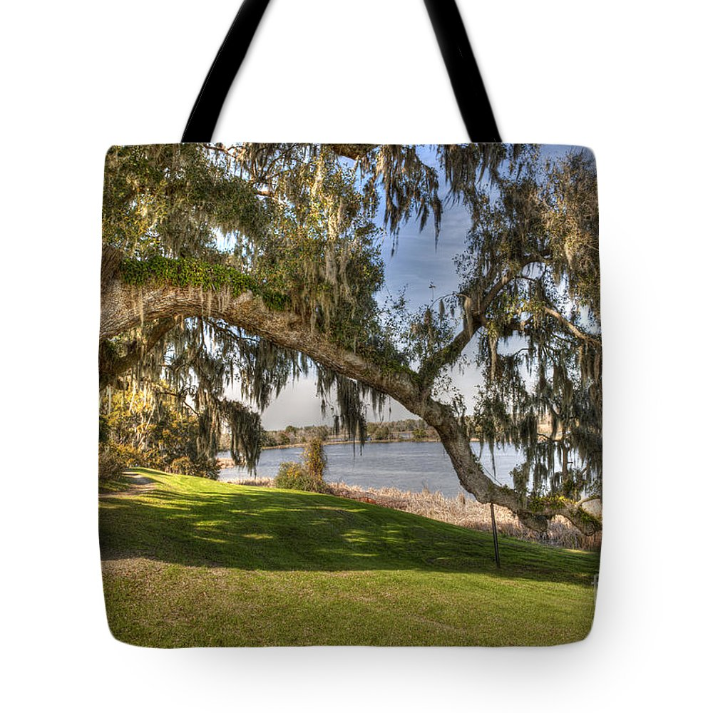 Love Oak Tree Tote Bag featuring the photograph Stretch To The Water by Dale Powell