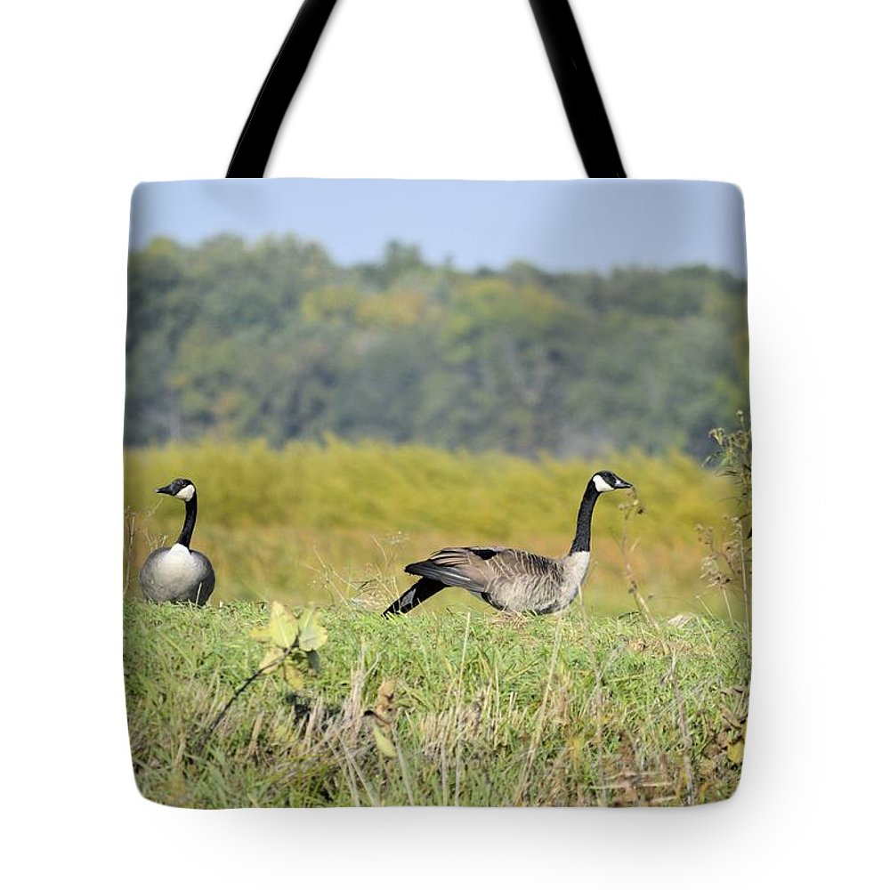 Goose Tote Bag featuring the photograph Stretching Out by Bonfire Photography