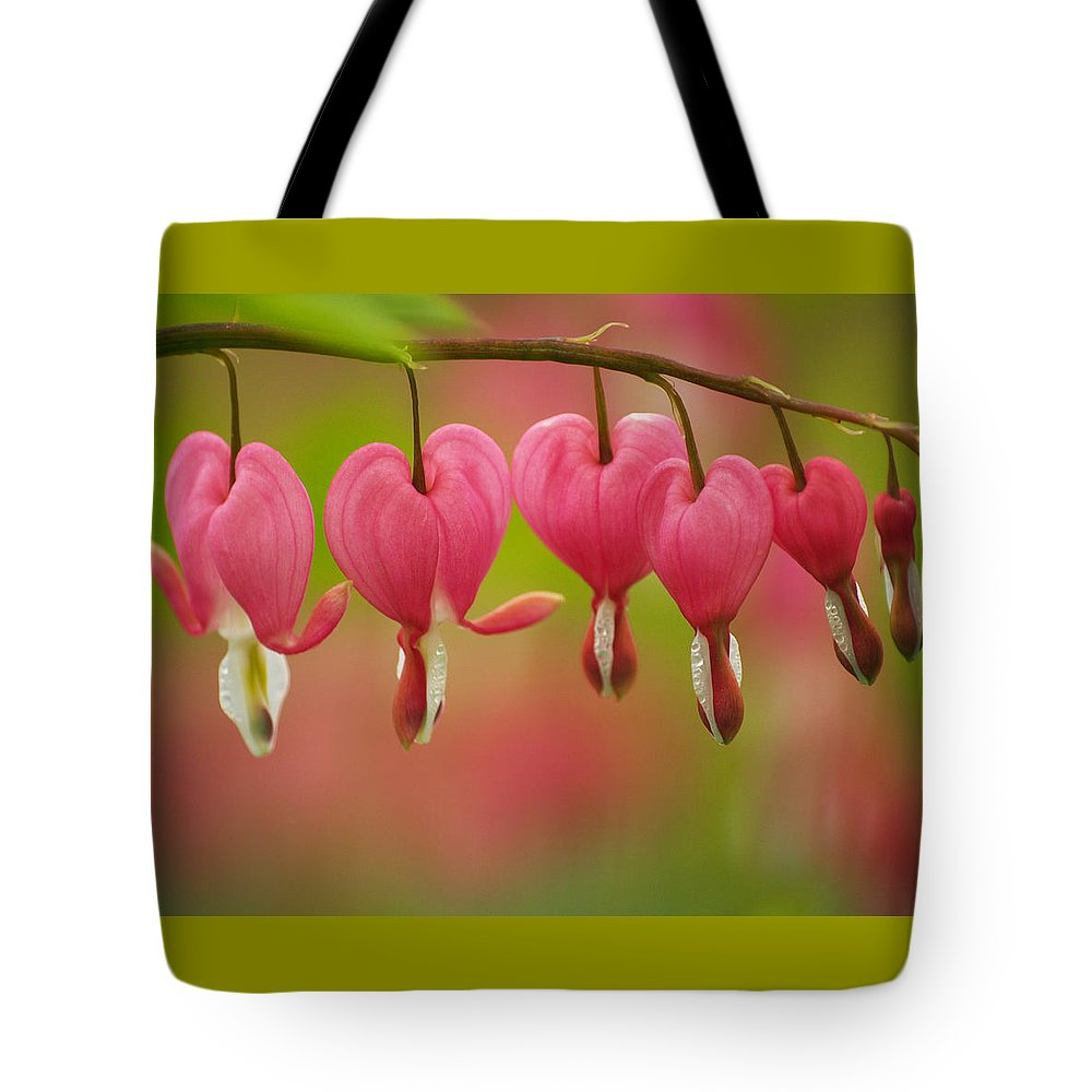 Flowers Tote Bag featuring the photograph String Of Hearts by Dorothy Lee