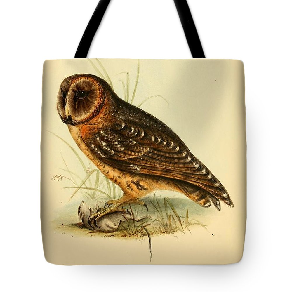 Audubon Tote Bag featuring the painting Strix Owl by Philip Ralley