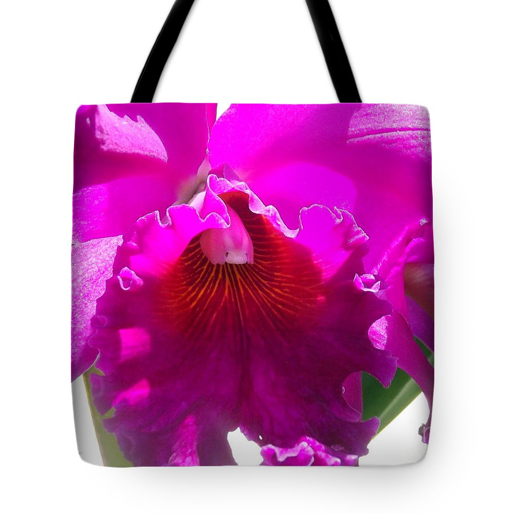 Stunning Tote Bag featuring the photograph Stunning by Jennifer Lavigne