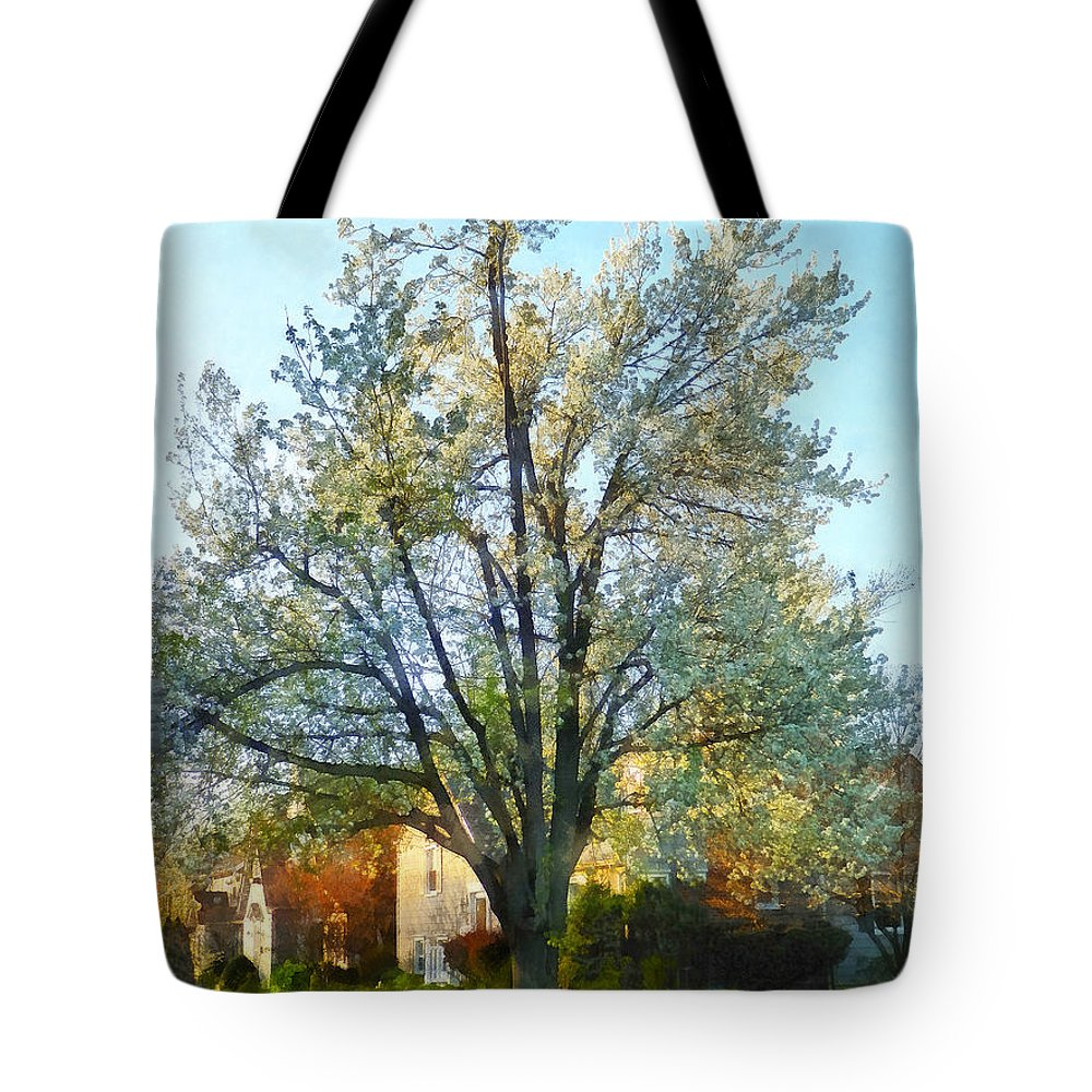 Flowering Tree Tote Bag featuring the photograph Suburbs - Late Afternoon In Spring by Susan Savad