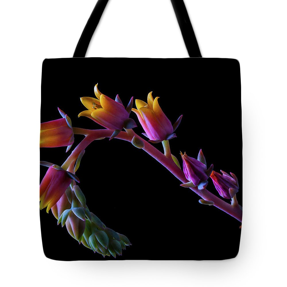 California Tote Bag featuring the photograph Succulent Flowers On A Stalk by Bill Gracey