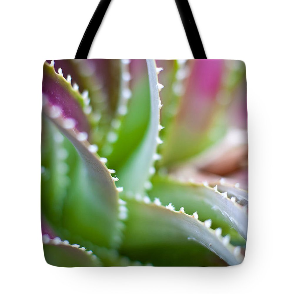 Succulent Tote Bag featuring the photograph Succulent Swirls by Mike Reid