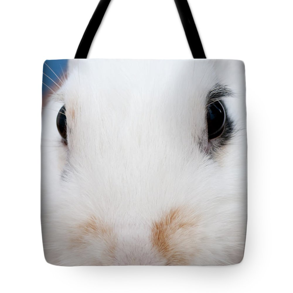 White Tote Bag featuring the photograph sugar the easter bunny 1 -A curious and cute white rabbit close up by Pedro Cardona Llambias
