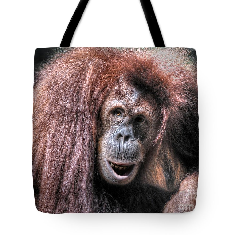 Sumatran Orangutan (pongo Abelii) Tote Bag featuring the photograph Sumatran Orangutan by Savannah Gibbs