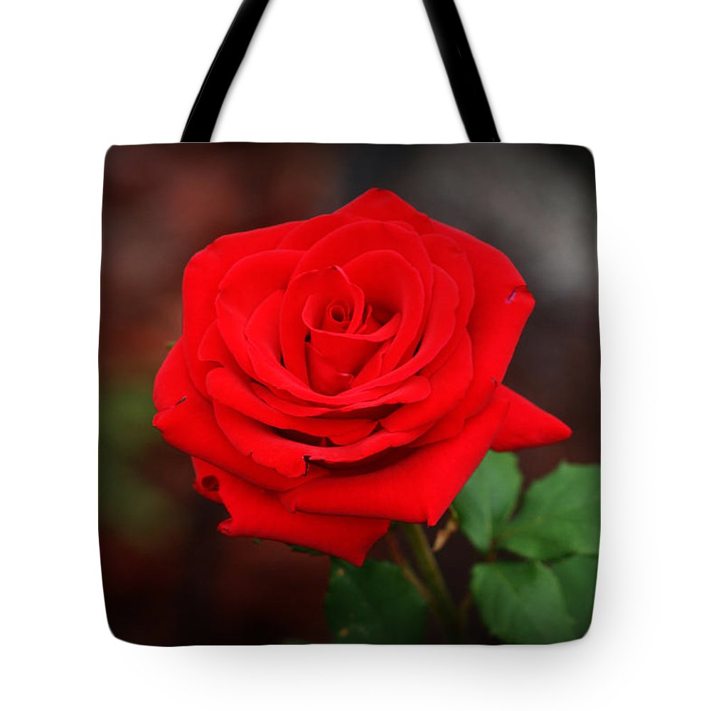 Red Rose Tote Bag featuring the photograph Summer Rose by Kay Novy