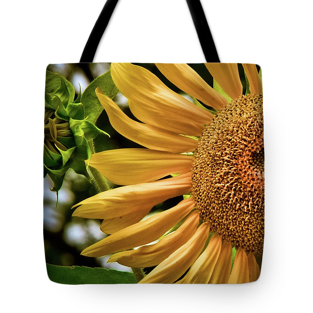 Agriculture Tote Bag featuring the photograph Summer Splendor by Sharon Meyer
