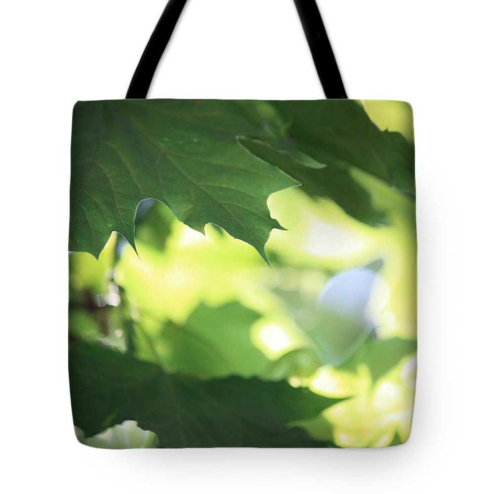 Nature Tote Bag featuring the photograph Summer Sunshine by Carol Groenen
