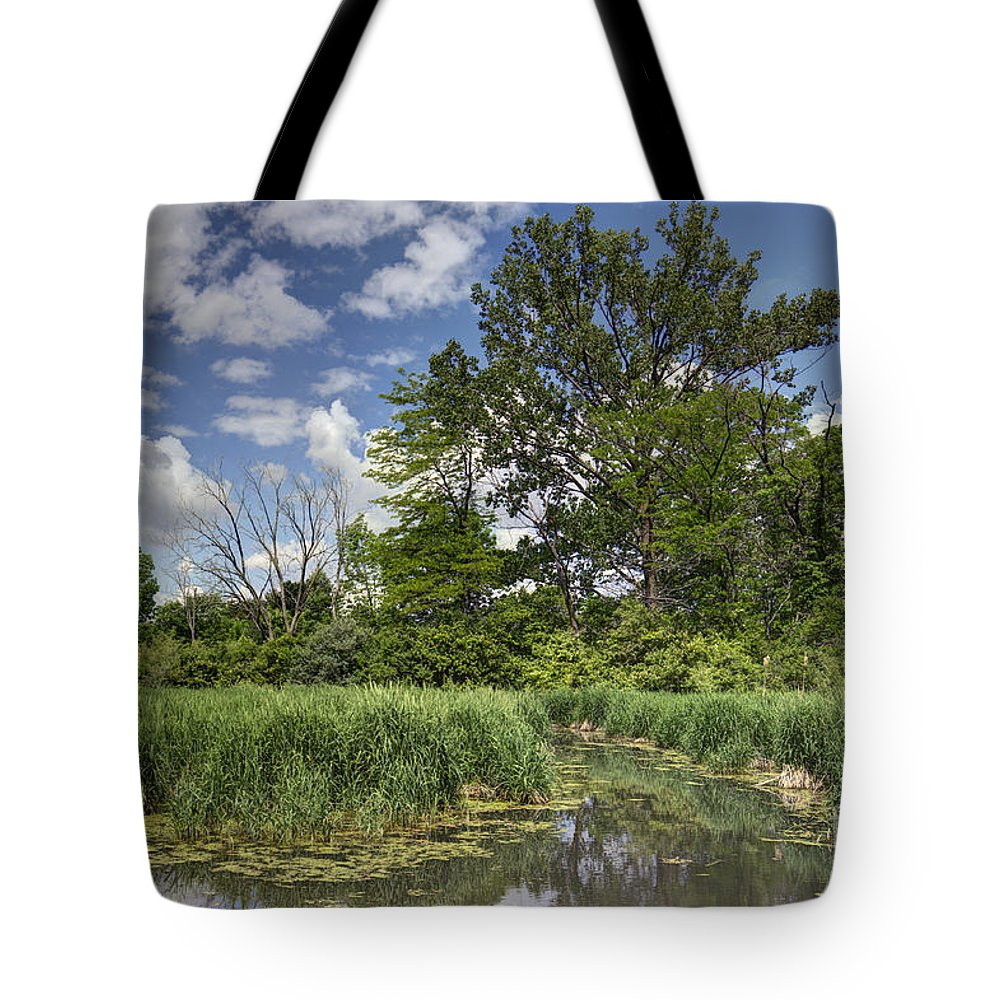 Backgrounds Tote Bag featuring the photograph Summer Time At Moraine View State Park by Alan Look