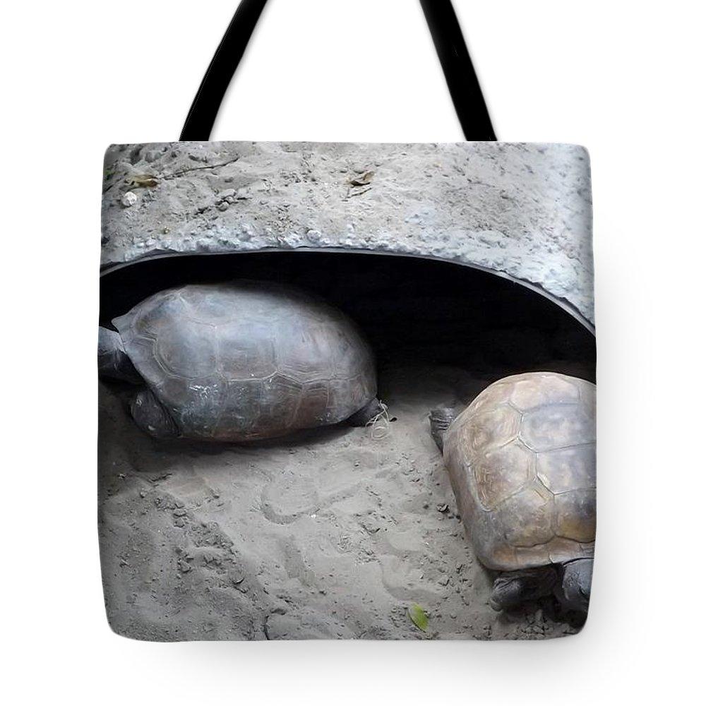 Turtle Tote Bag featuring the photograph Sun Basking Turtles by Linda Kerkau