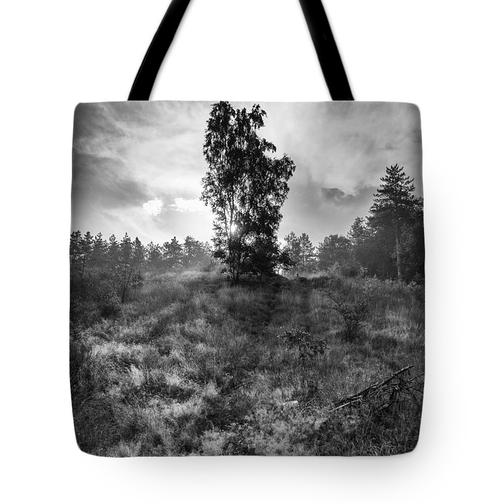 Sun Behind Tree Tote Bag featuring the photograph Sun Behind The Tree by Brothers Beerens