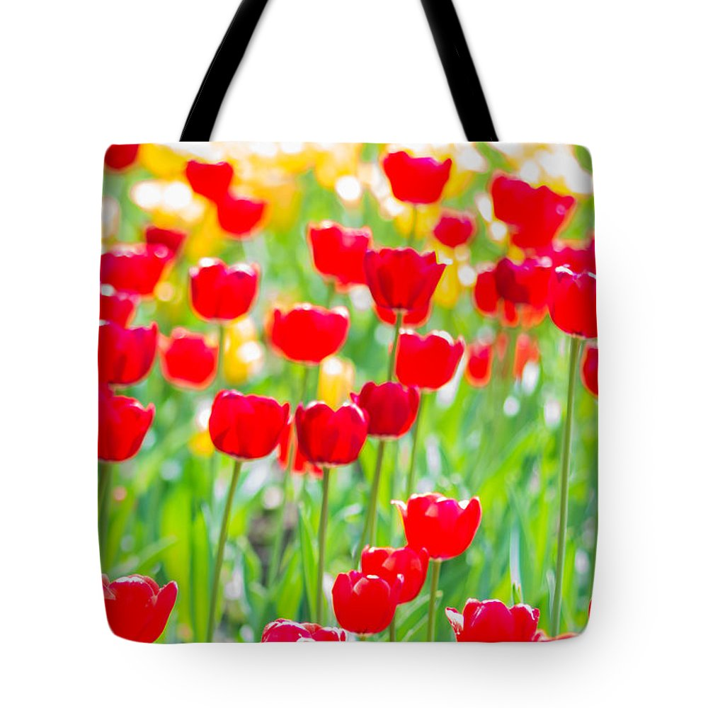 Flower Tote Bag featuring the photograph Sun Drenched Tulips - Featured 3 by Alexander Senin
