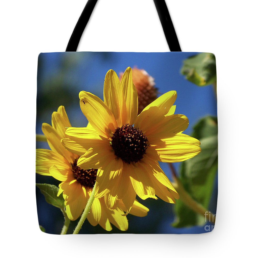 Arizona Tote Bag featuring the photograph Sun Flowers by Kathy McClure