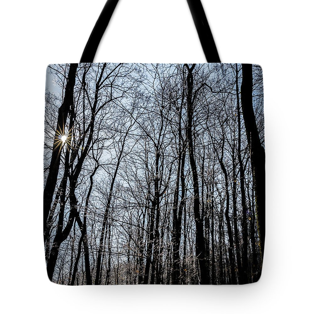 Sunset Tote Bag featuring the photograph Sun Lit Frozen Rain 2 by Anthony Hughes