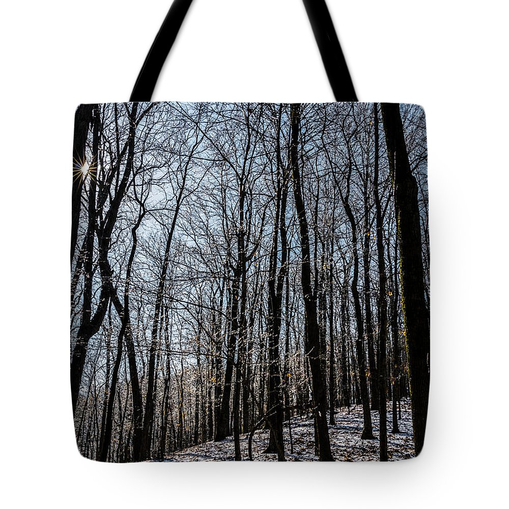 Sunset Tote Bag featuring the photograph Sun Lit Frozen Rain 3 by Anthony Hughes