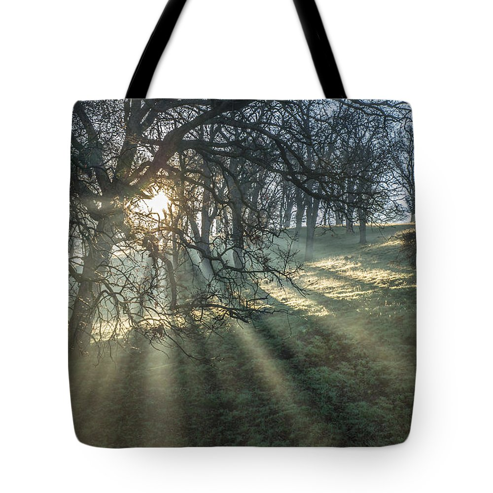 Landscape Tote Bag featuring the photograph Sun Rays On A Hillside by Marc Crumpler