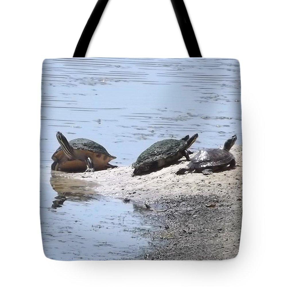 Turtle Tote Bag featuring the photograph Sun Turtles by Linda Kerkau