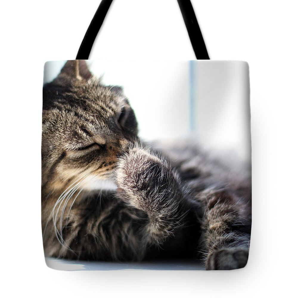 Cat Tote Bag featuring the photograph Sunbathing by Todd Blanchard