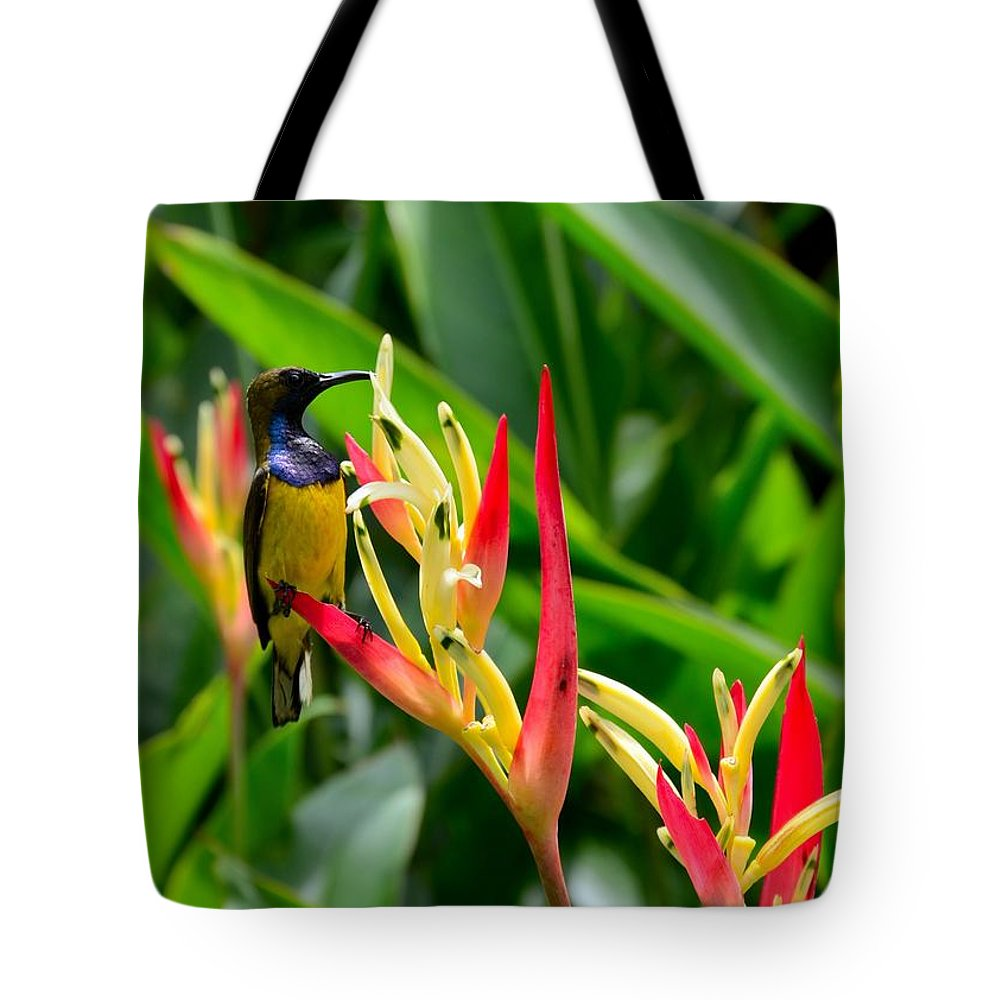 Sunbird Tote Bag featuring the photograph Sunbird On Heliconia Ginger Flowers Singapore by Imran Ahmed