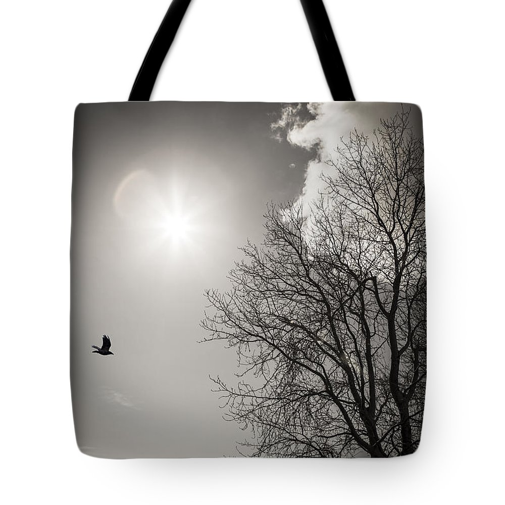 Alaska Tote Bag featuring the photograph Sunday Afternoon by Michele Cornelius