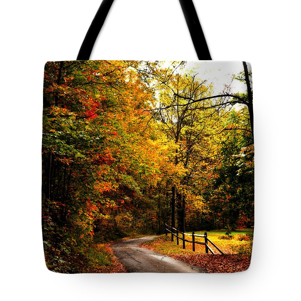 Paths Tote Bag featuring the photograph Sunday Drive by Lj Lambert