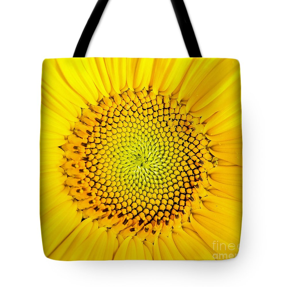 Sunflower Seeds Photographs Tote Bags