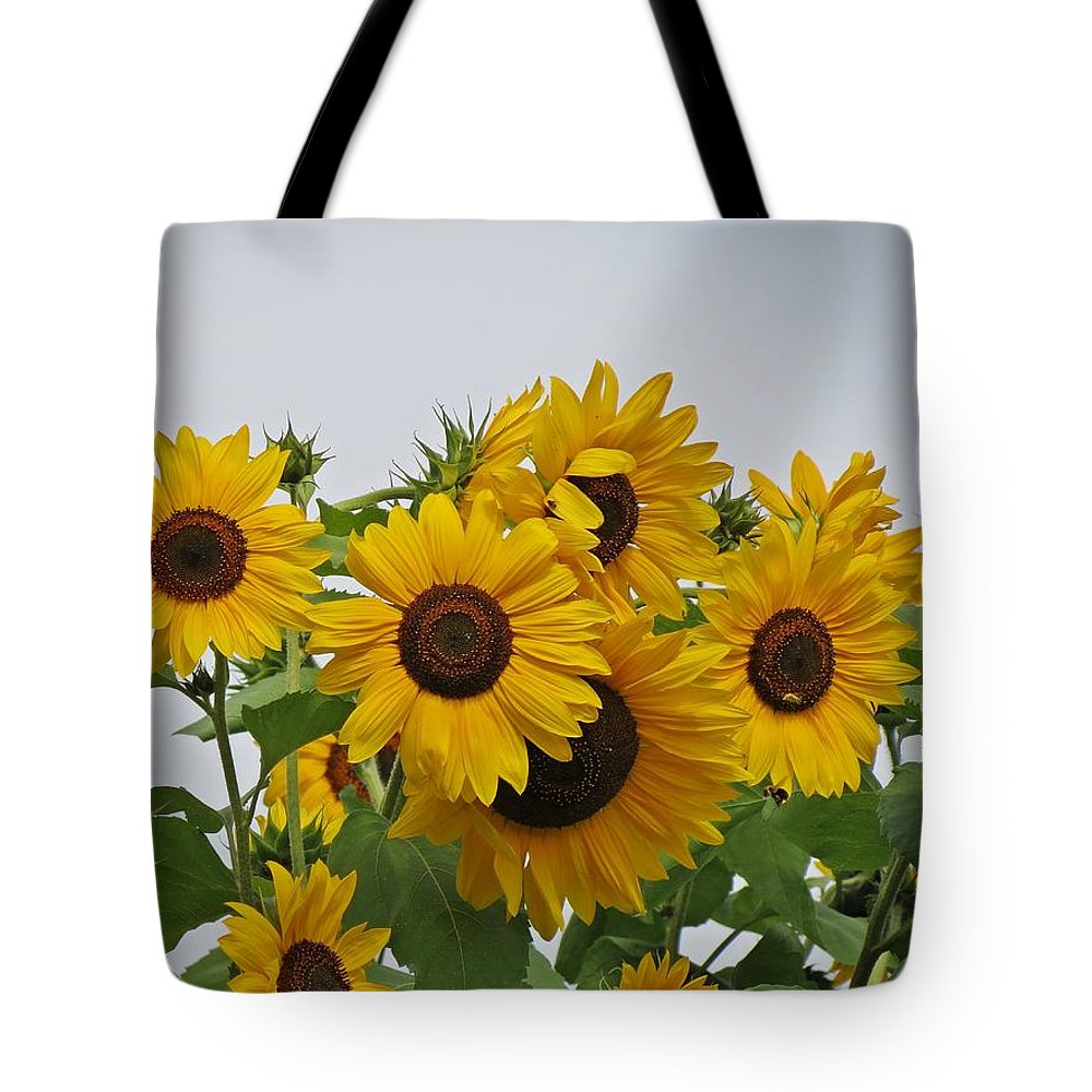 Sunflowers Tote Bag featuring the photograph Sunflower Group by MTBobbins Photography