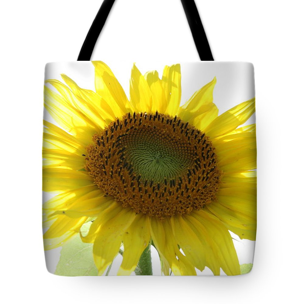 Sunflower Tote Bag featuring the photograph Sunflower In Light by Neal Eslinger