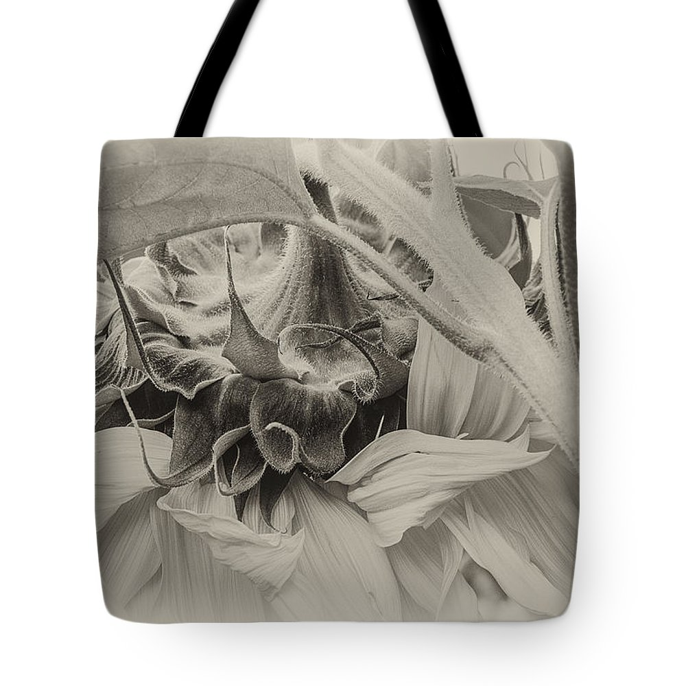 Sunflower Tote Bag featuring the photograph Sunflower by Lisa Bryant