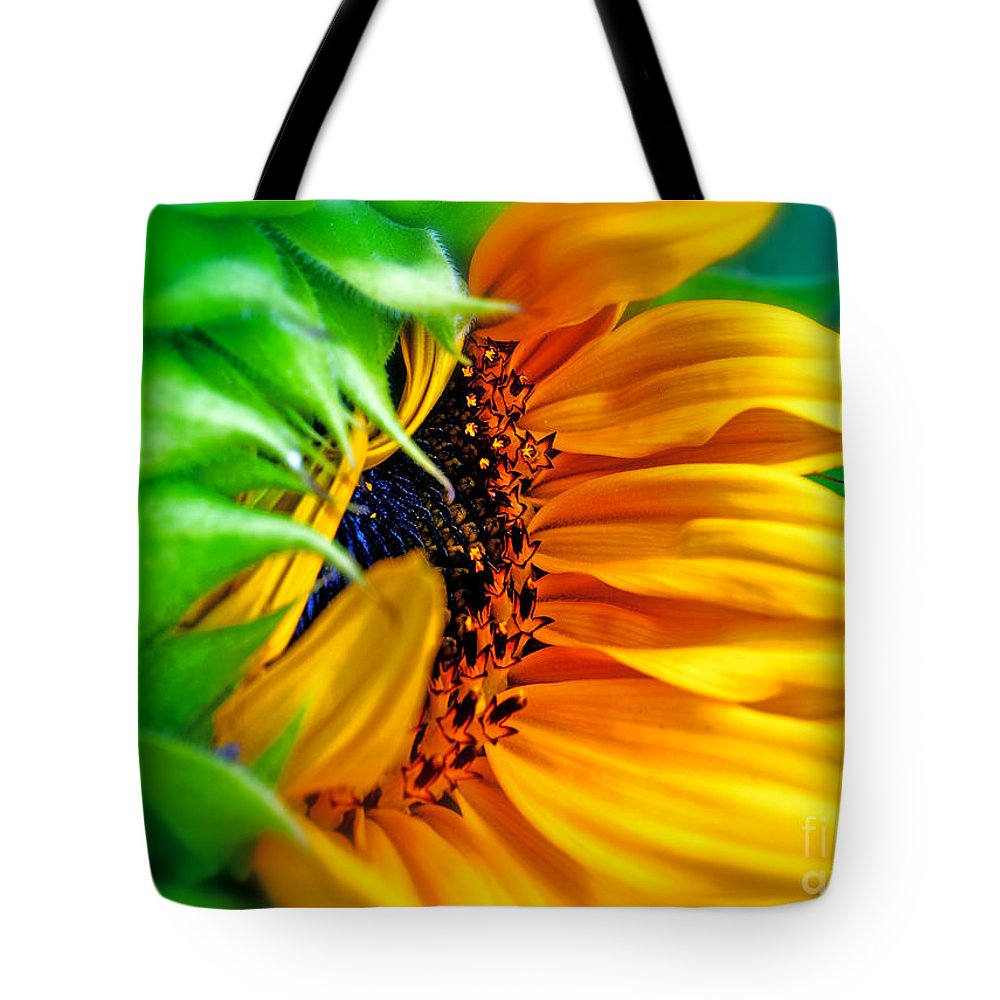 Sunflower Tote Bag featuring the photograph Sunflower Volunteer Good Morning by Gwyn Newcombe