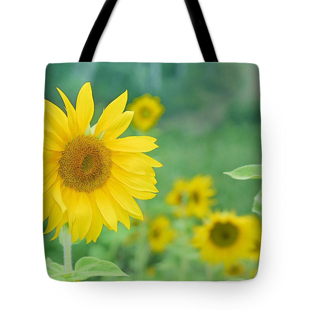 Sunflower Tote Bag featuring the photograph Sunflowers Vintage Dreams by Guido Montanes Castillo