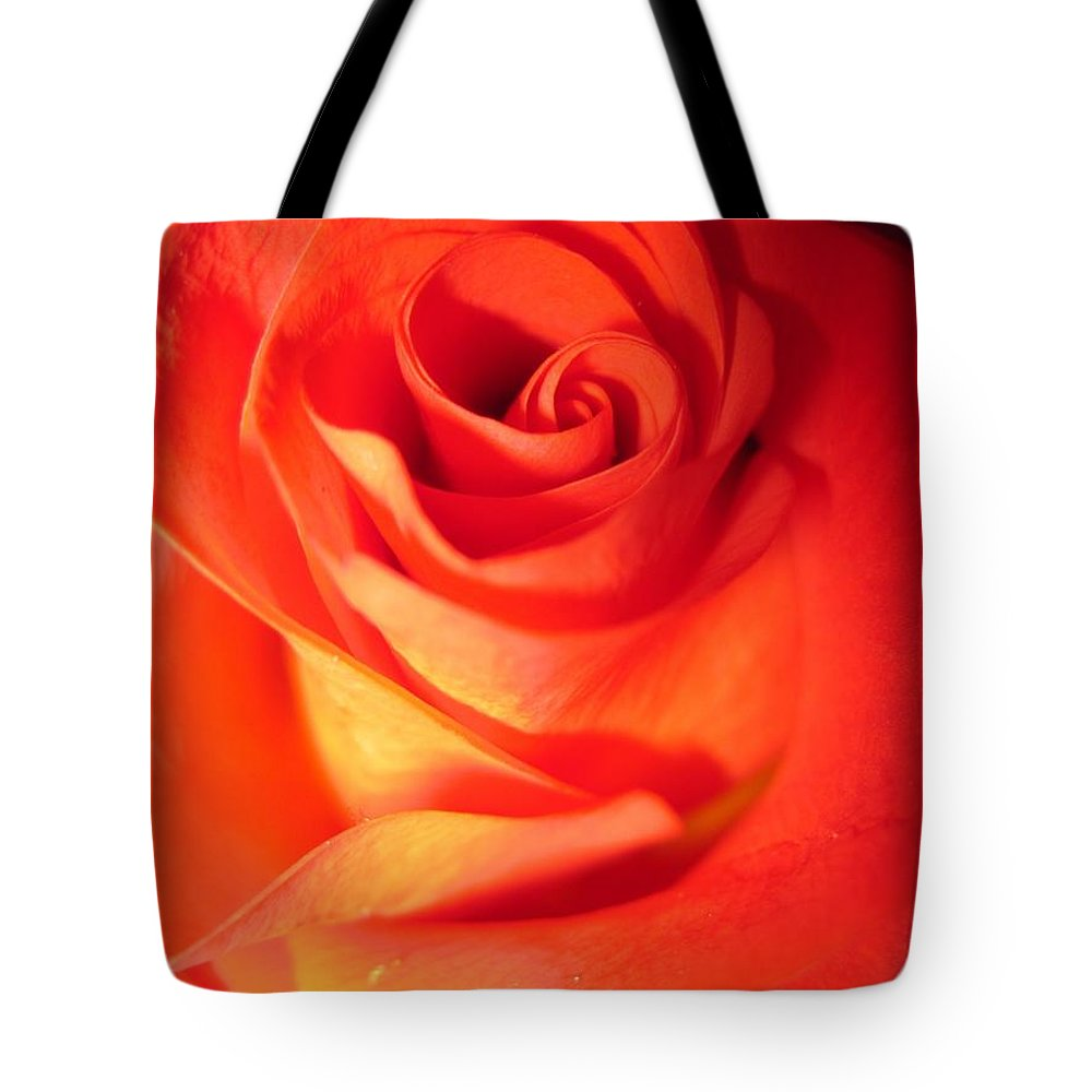 Floral Tote Bag featuring the photograph Sunkissed Orange Rose 10 by Tara Shalton