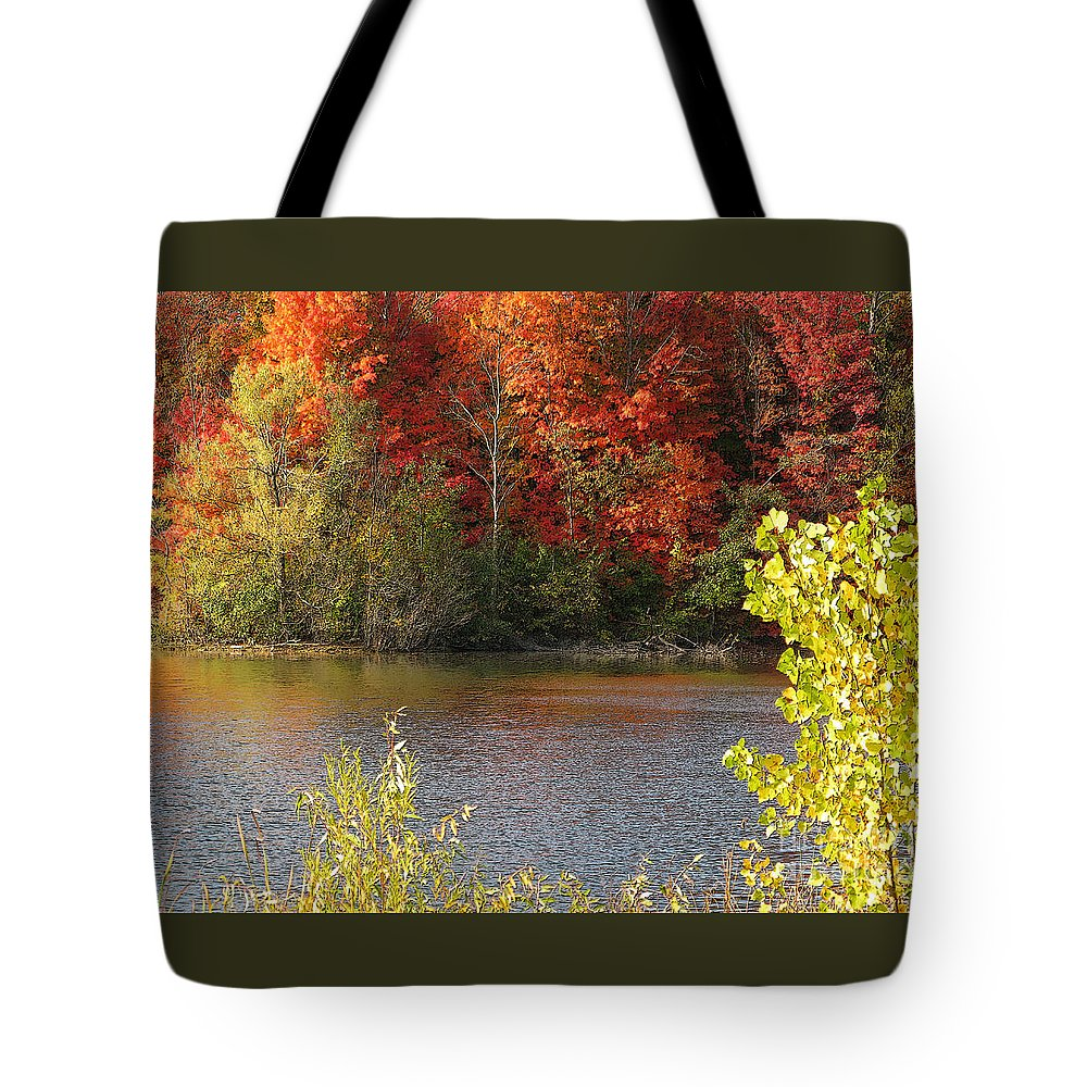Autumn Tote Bag featuring the photograph Sunlit Autumn by Ann Horn