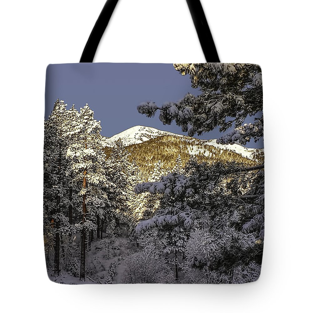 Landscape Tote Bag featuring the photograph Sunlit by Maria Coulson