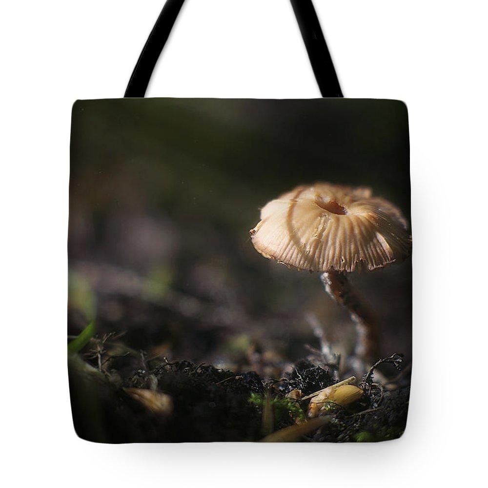 Mushroom Tote Bag featuring the photograph Sunlit Mushroom by Scott Norris