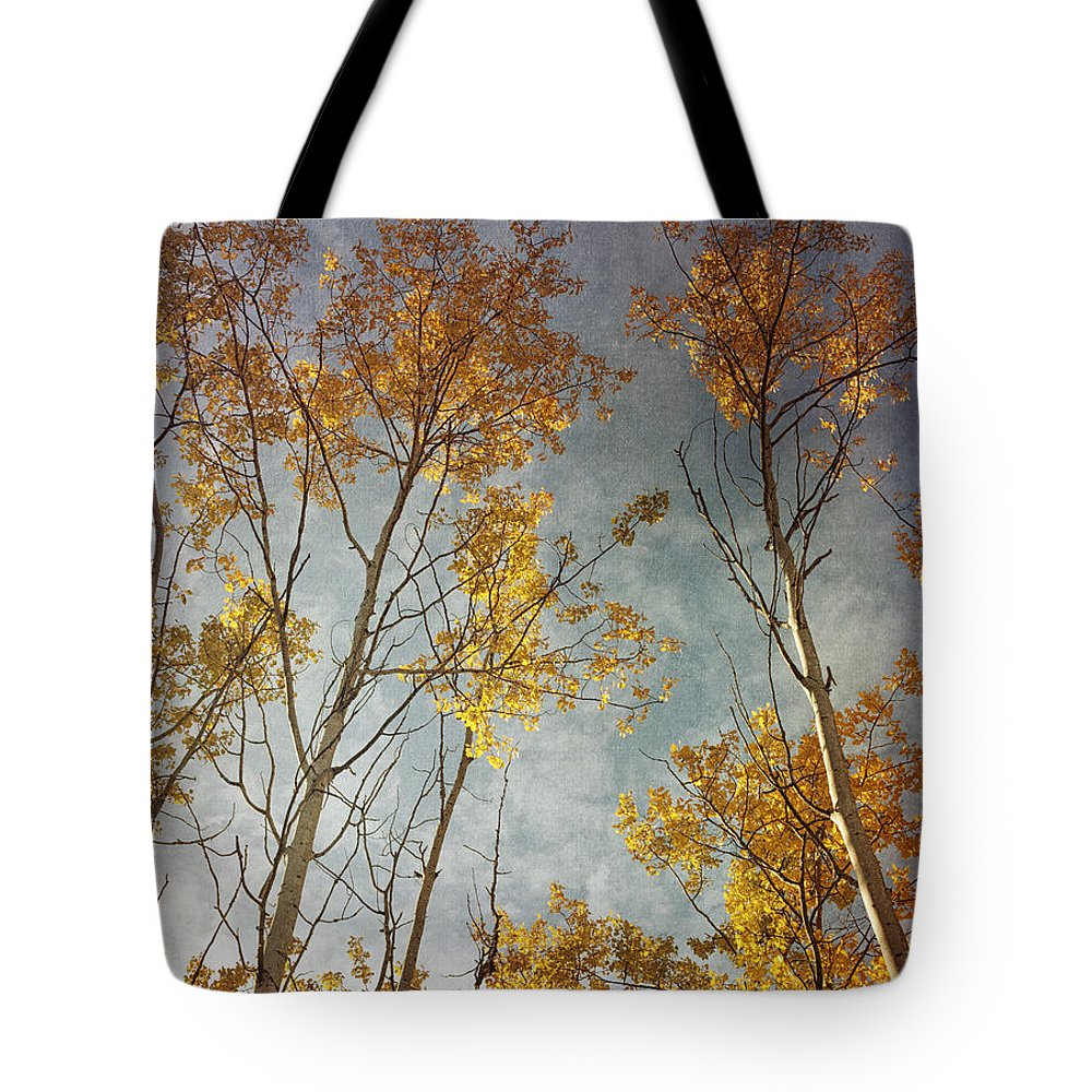 Leaves Tote Bag featuring the photograph Sunny Leaves Tall by Priska Wettstein
