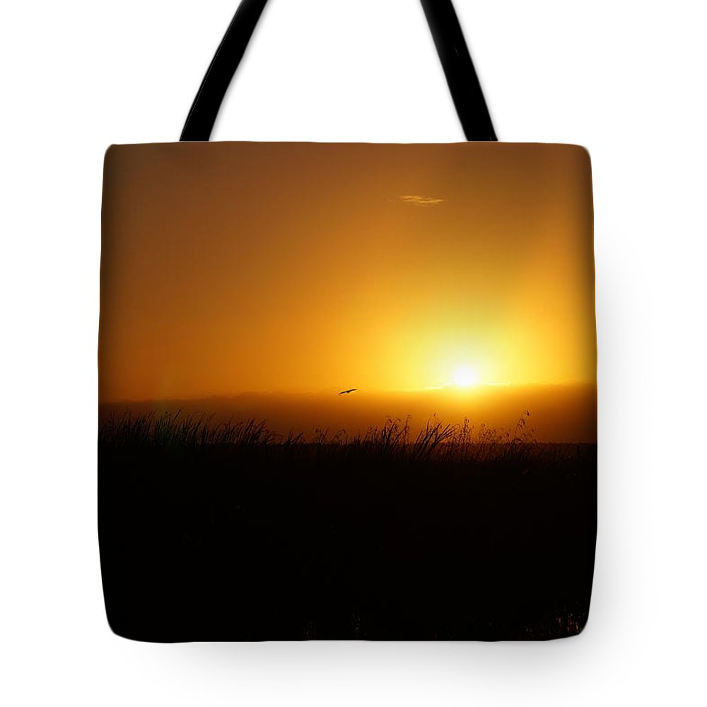 Landscape Sunrise/sunset Everglades National Park Sawgrass Bird Flying Wildlife Florida Tote Bag featuring the photograph Sunrise Over The Everglades by John Wall