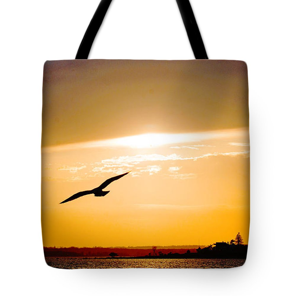 Sunset Tote Bag featuring the photograph Sunscaped by Joe Geraci