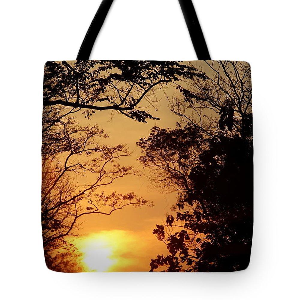 Sunset Tote Bag featuring the photograph Sunset At Jungle by Agustin Uzarraga