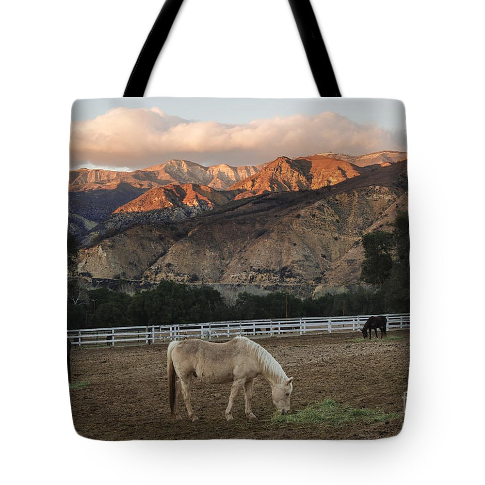 Rancho Oso Tote Bag featuring the photograph Sunset At Rancho Oso by Yefim Bam
