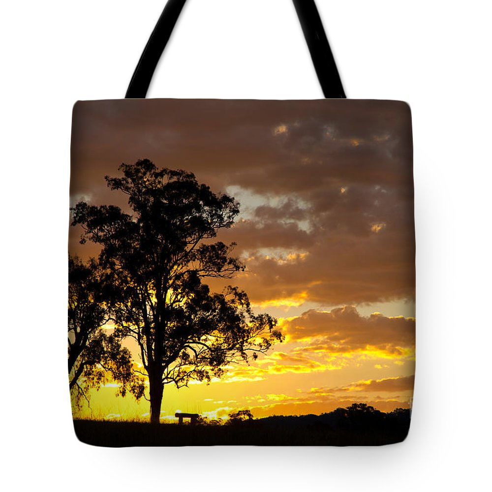 Sunset Tote Bag featuring the photograph Sunset by Carole Lloyd