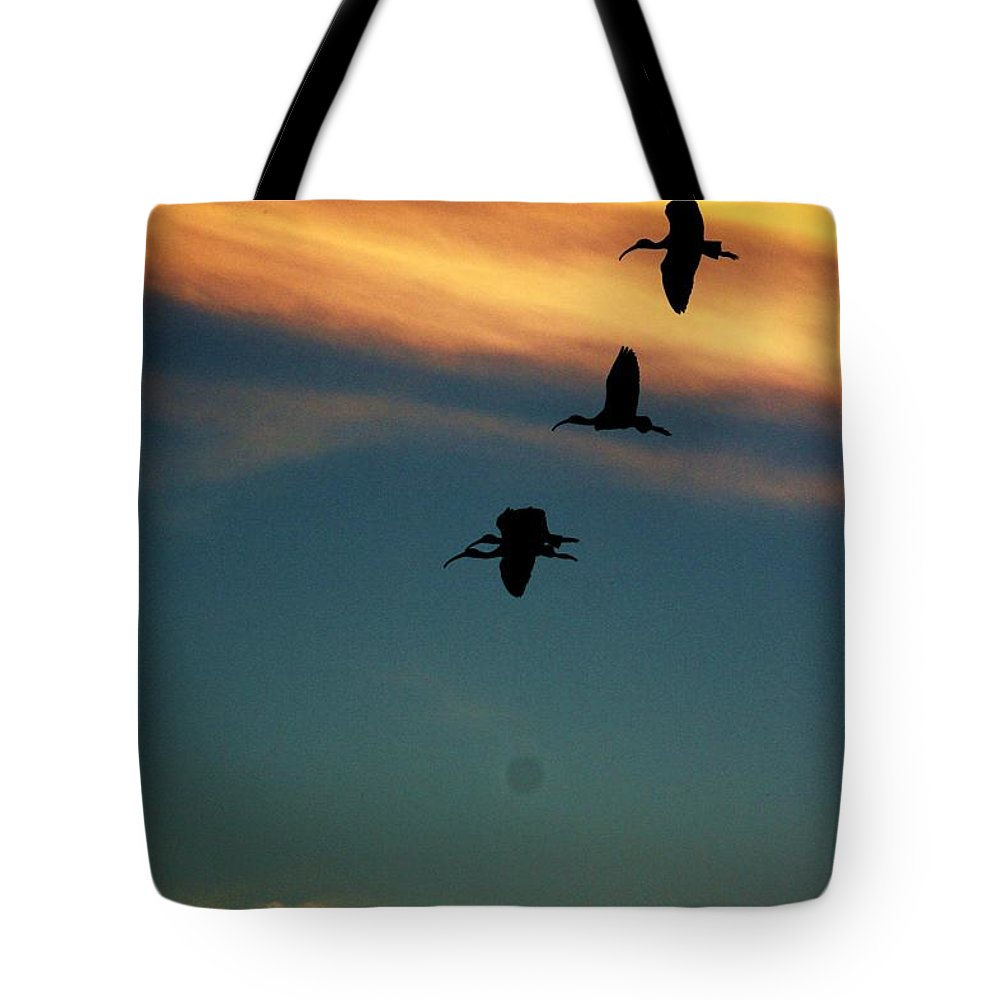 Sunset Tote Bag featuring the photograph Sunset Flight by Chuck Hicks
