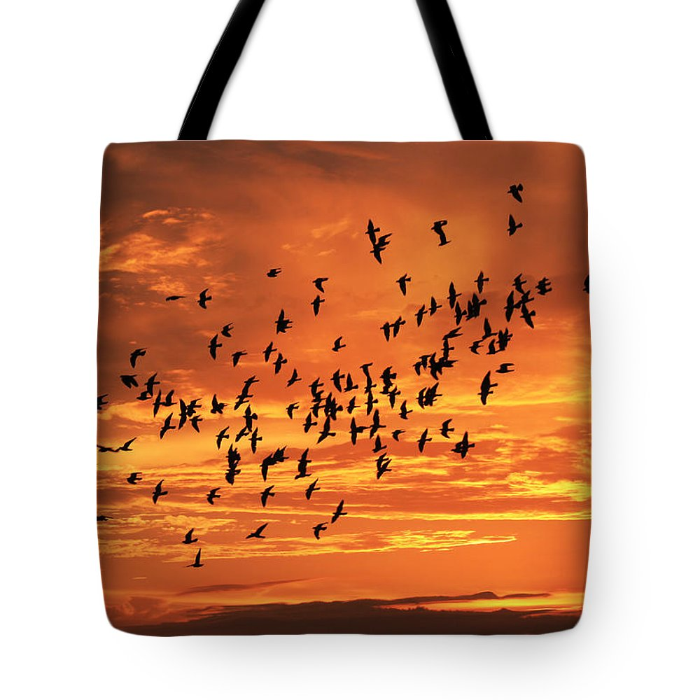 Birds Tote Bag featuring the photograph Sunset Flight by Mandy Shupp