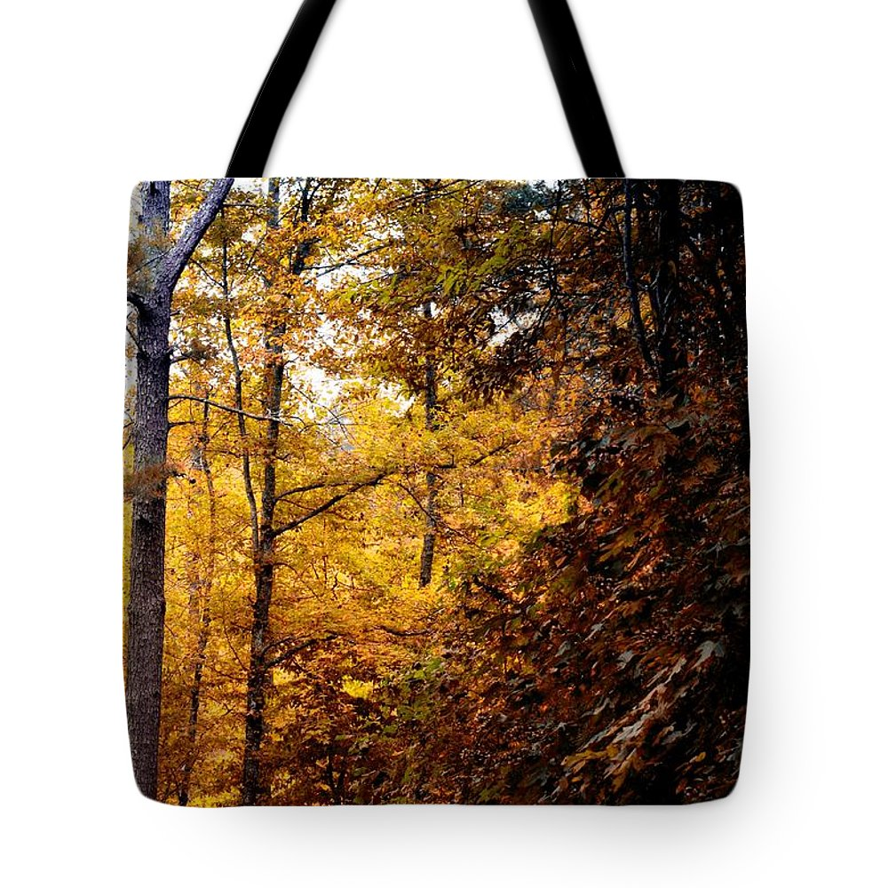Sunset Forest Tote Bag featuring the photograph Sunset Forest by Maria Urso