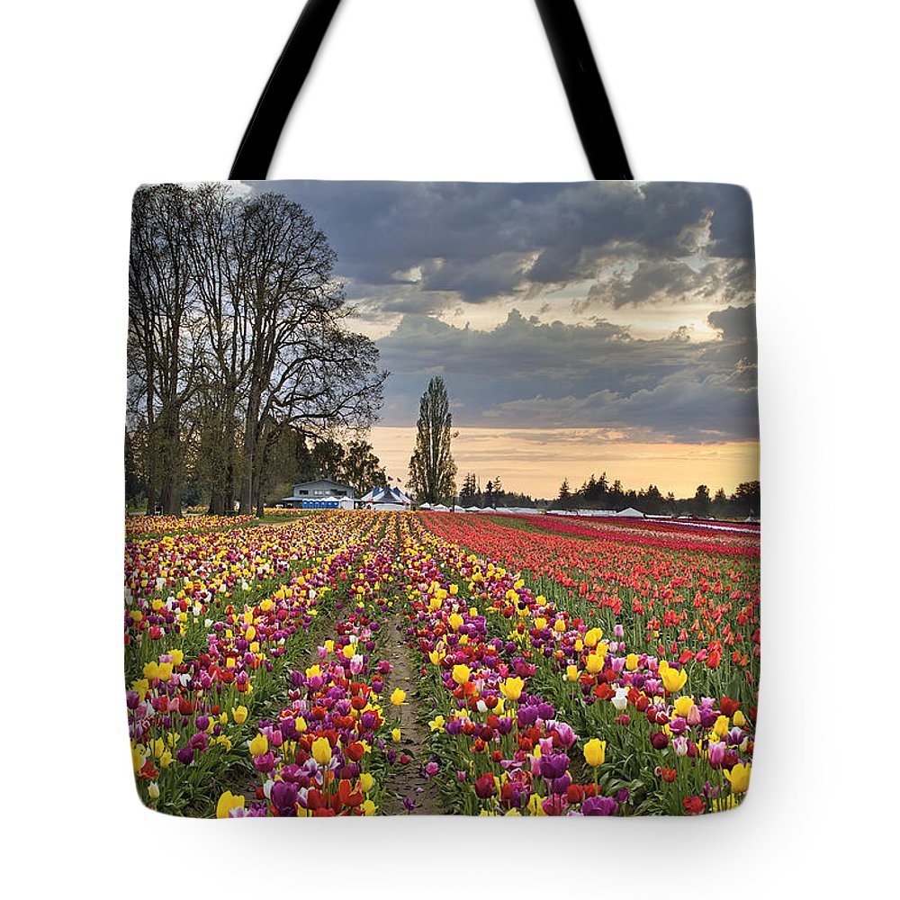 Sunset Tote Bag featuring the photograph Sunset Over Tulip Flower Farm In Springtime by Jit Lim