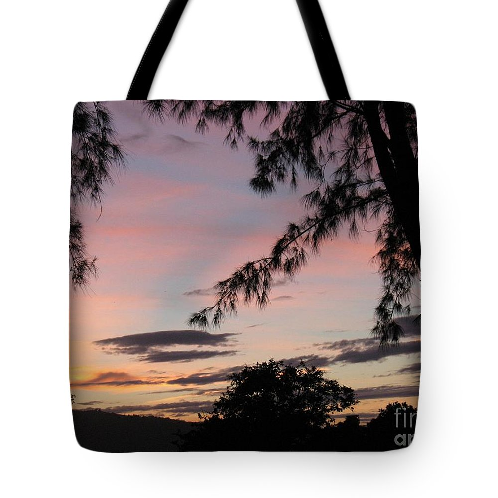 Sunset Sainte Marie-reunion Island-indian Ocean-trees-nature-sun Tote Bag featuring the photograph Sunset Sainte Marie-reunion Island-indian Ocean by Francoise Leandre