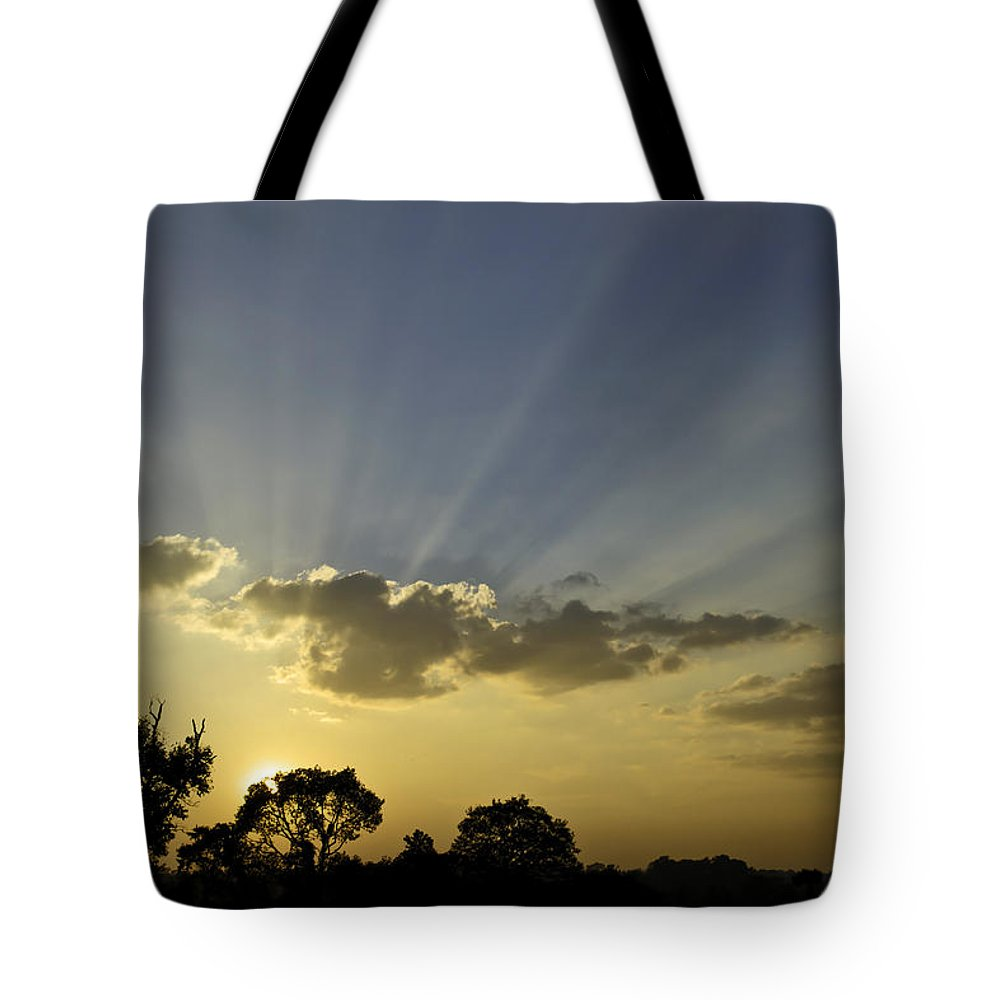 Sunset Tote Bag featuring the photograph Sunset Sunrays by David Freuthal